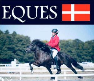 Der her er VM for islandske heste